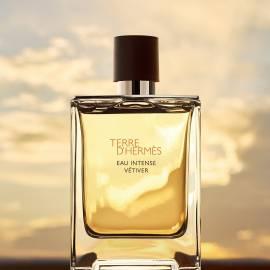 Hermes TERRE D' HERMES EAU INTENSE VETIVER Eau de Parfum 100ml